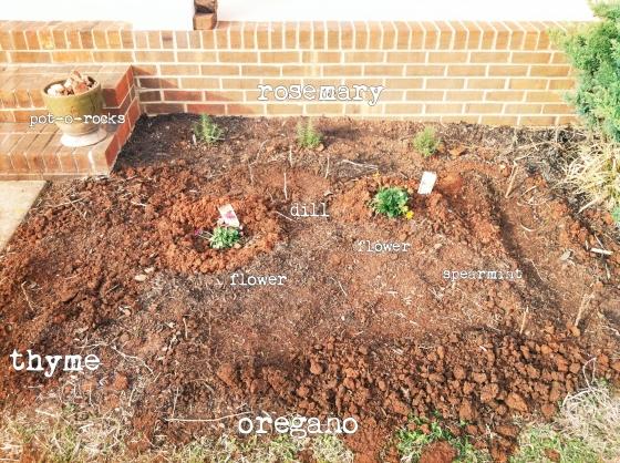 BeFunky_main garden.jpg