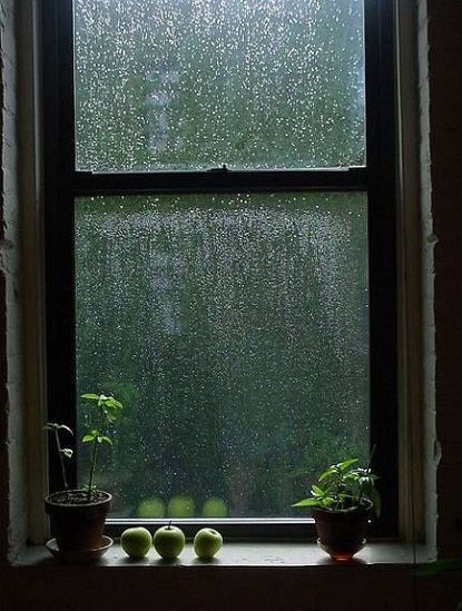 Good Morning Vietnam You Got A Window Open It : Rainy days for the indoorsy small but valuable